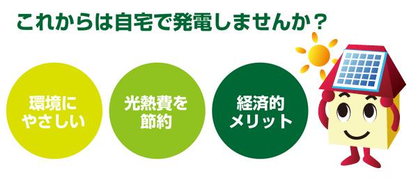 img_taiyo1